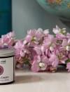 Rose & Frankincense anti ageing cream