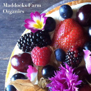 Maddocks Farm Organics edible flowers