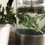 Fresh herbal Rosemary tea for skin and hair